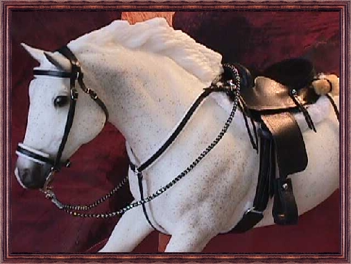 Endurance Saddle Set * Owned by Terri Dewit
