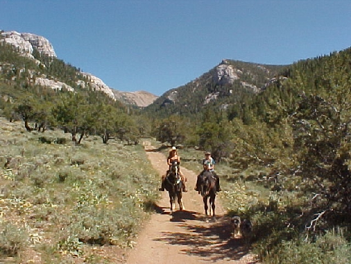 Ride In Upper Berry Creek Canyon With Friend