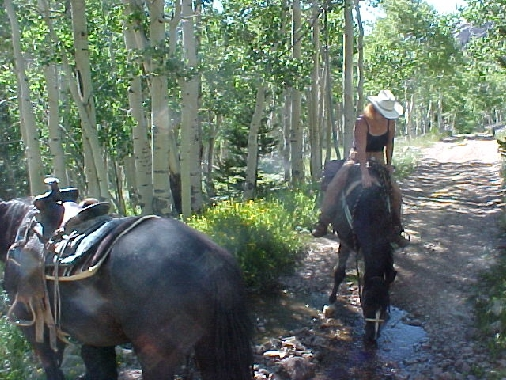 Ride In Upper Berry Creek Canyon